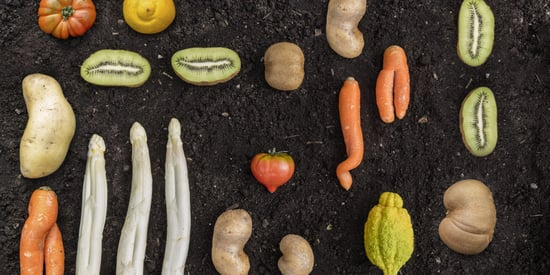 Meet 5 People Who Want You To Stop Judging Ugly Fruit And Vegetables