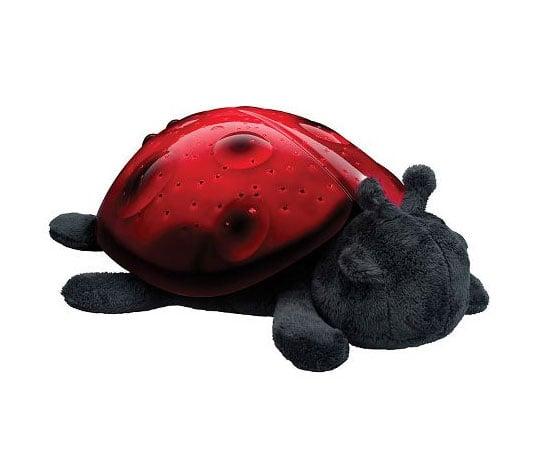 Light 'Em Up Ladybug