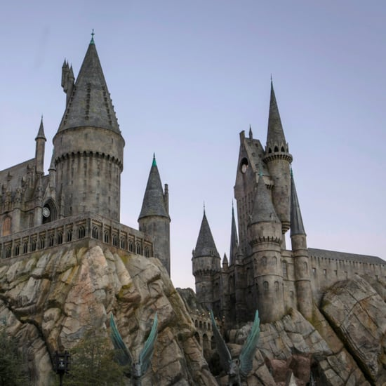 Harry Potter World Hollywood Roller Coaster Ride   Video