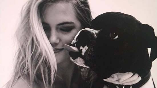 John Stamos, Kate Upton and More Celebs Celebrate National Dog Day