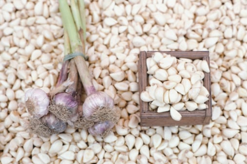 Happy Hour: Funky Garlic