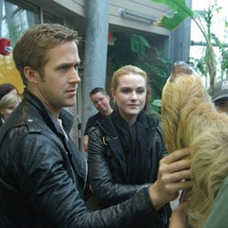 Pictures of Ryan Gosling and Evan Rachel Wood at Cincinnati Zoo