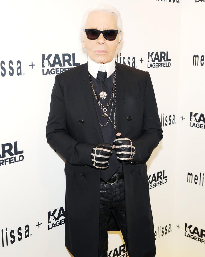 Karl on His Cat, Choupette