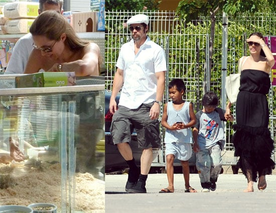 Photos of Brad Pitt, Angelina Jolie, Maddox Jolie-Pitt, Pax Jolie-Pitt Buying Gerbils in France
