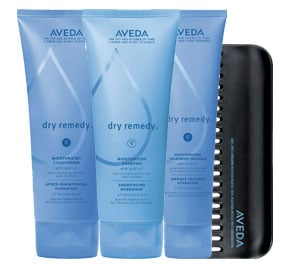 New Product Alert: Aveda Dry Remedy System