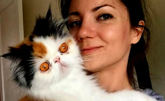 Graveskull the Persian: Her Face Is Basically an Antidepressant