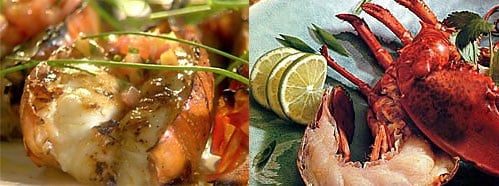 Grilled Lobster Two Ways — Beginner and Expert