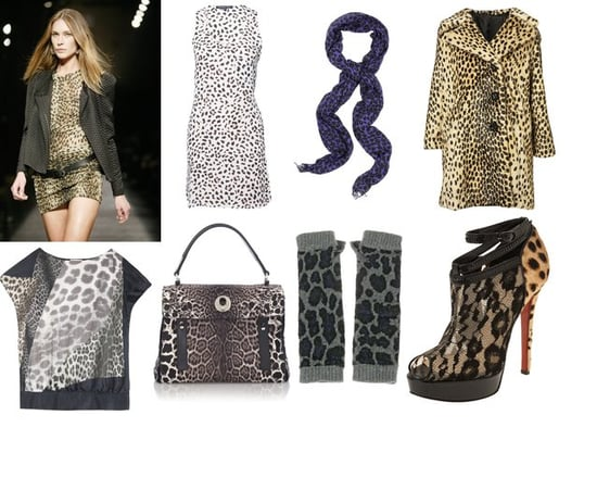 Shopping: Leopard Spots