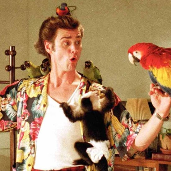 Best Quotes From Ace Ventura: Pet Detective