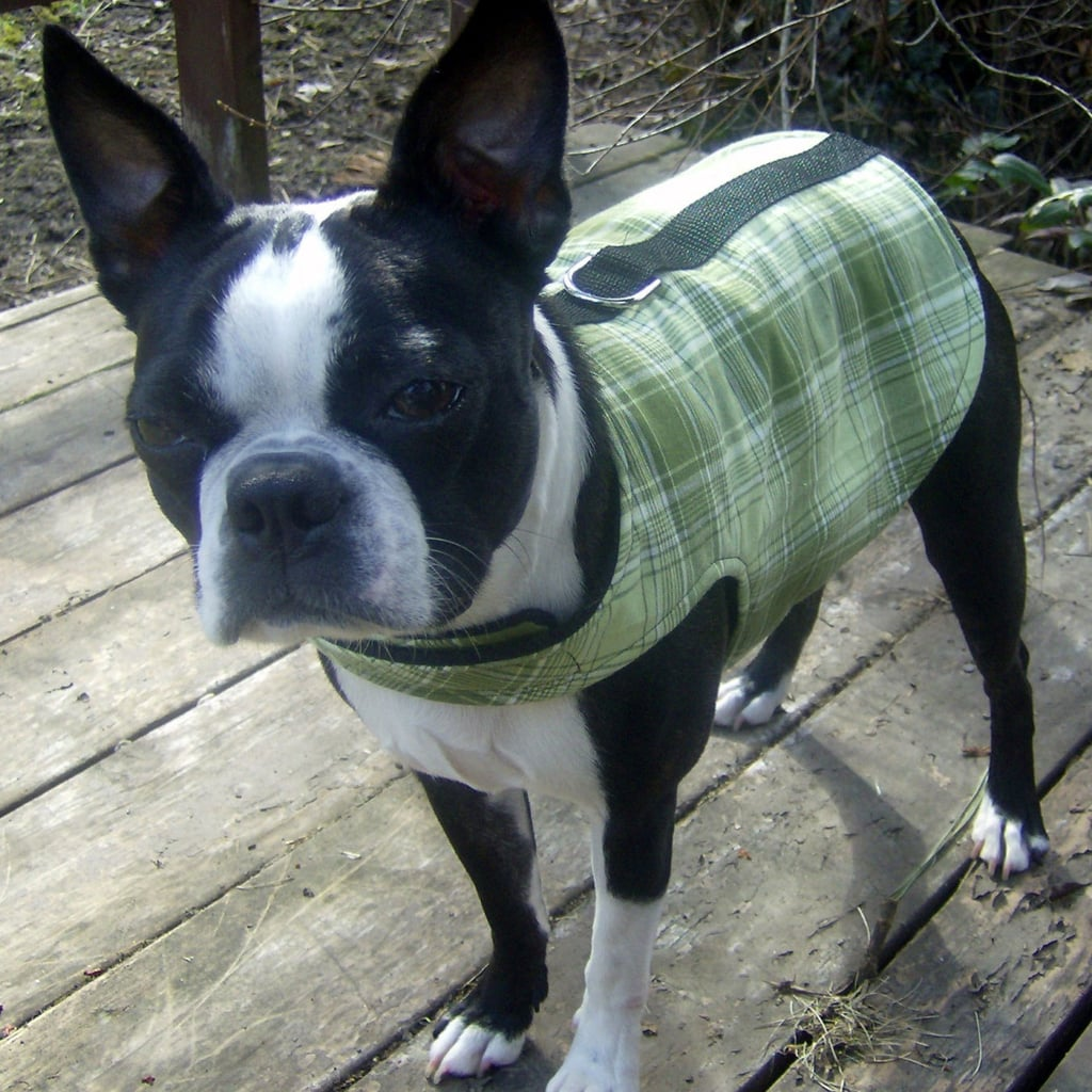 Dog Harness Coat-Vest, $23