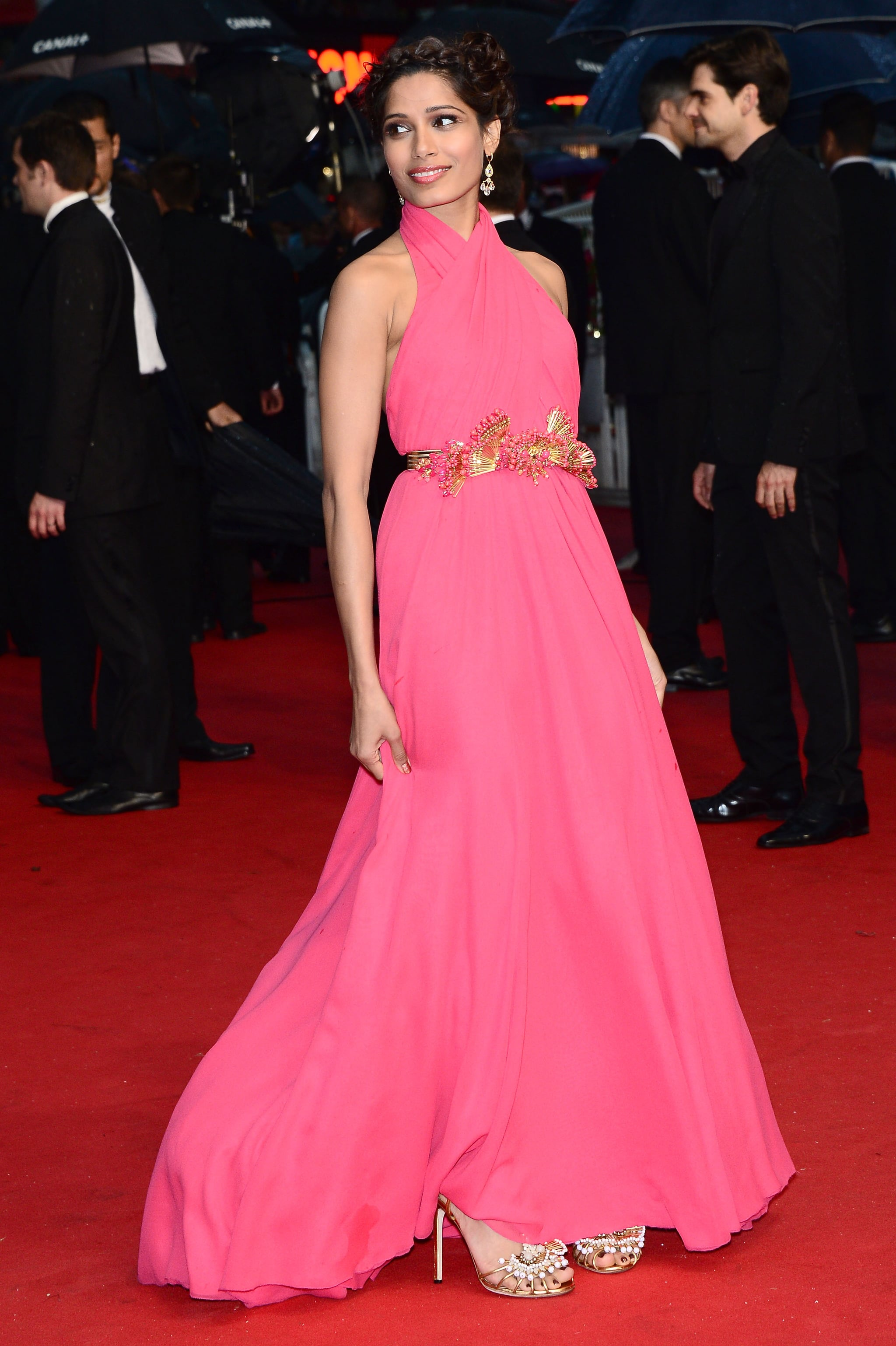 Freida Pinto looked lovely in a pink gown at the Cannes Film Festival Opening Ceremony.