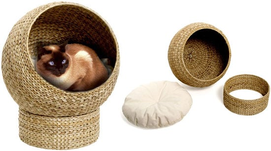 Awesomely Eco-Tastic (and Affordable!) Cat Cave