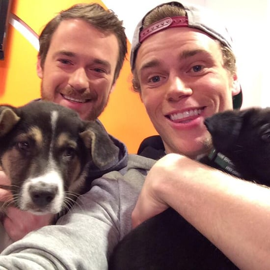 Gus Kenworthy and Sochi Stray Dogs on Today | Video