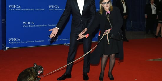 Carrie Fisher's Dog Gary Steals The Show At White House Correspondents' Dinner