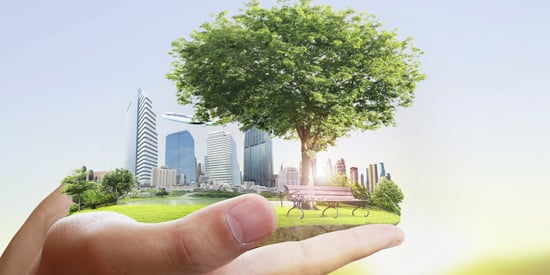 5 Environmentally Safe Actions That Will Increase Your Home's Value