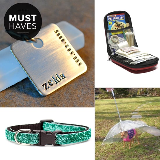 Get Outdoors With POPSUGAR Pets' April Must Haves
