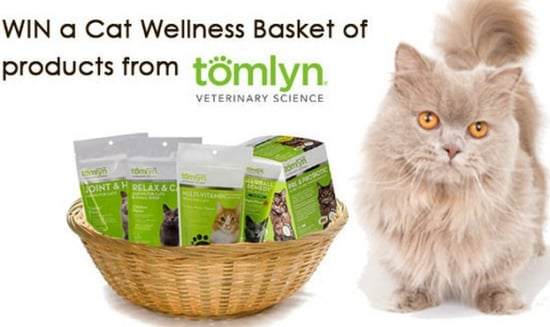 Win a Tomlyn Cat Wellness Pack