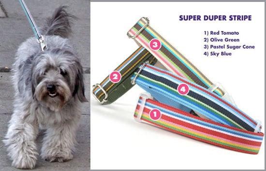 Found! Follow Thurman Murman's Super Stripe Lead