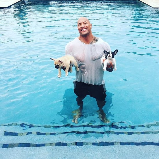 Dwayne Johnson Saves His 2 Puppies From Drowning in the Family Pool