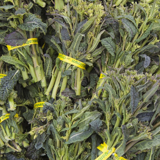 Broccoli Rabe/Broccolini