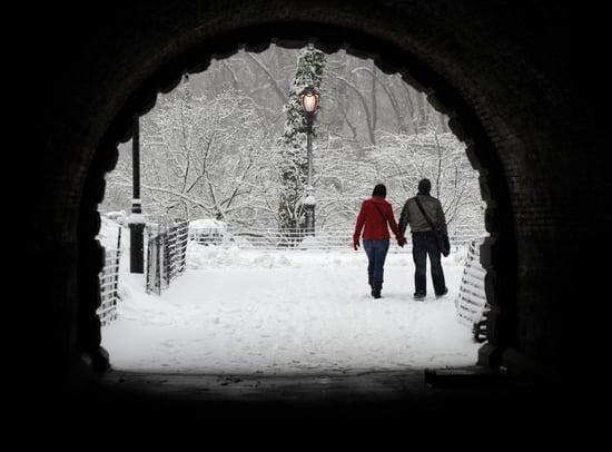 Snow in Central Park Photos
