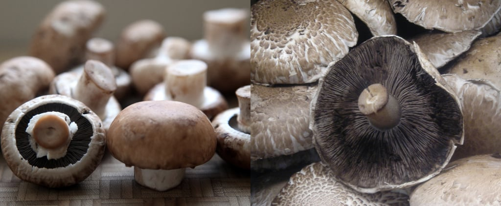 What's the Difference Between Portobello and Cremini Mushrooms?