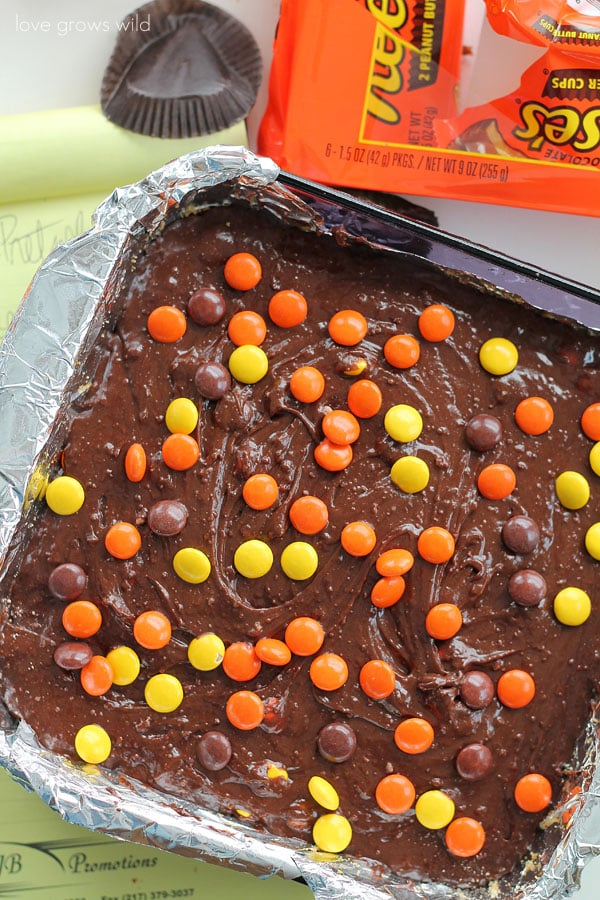 Reese's Stuffed Pretzel Brownies