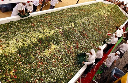 Spain Serves Up the World's Largest Salad