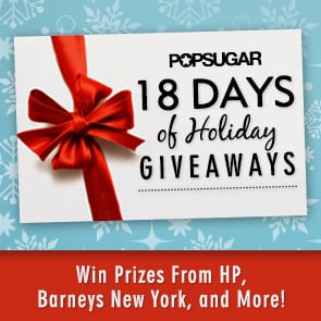 2012 Holiday Giveaways