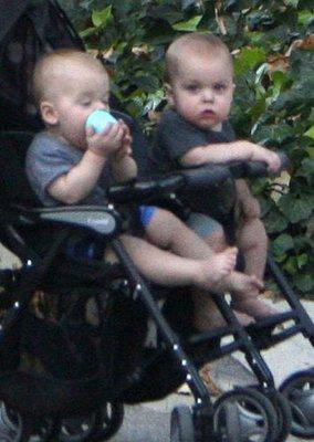 Sugarbabies: Dempsey Duo