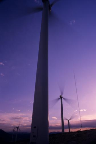 Casa Verde:  LA Gets Windy