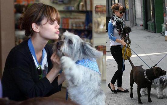 Rachel Bilson and Thurman Murman At the Doggie Day Care