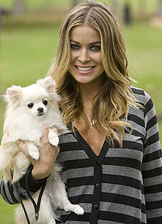 Sugar Shout Out: Celebs and Their Pets Bark for the Cure