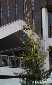 Country's Worst Christmas Tree Unveiled to Shoppers