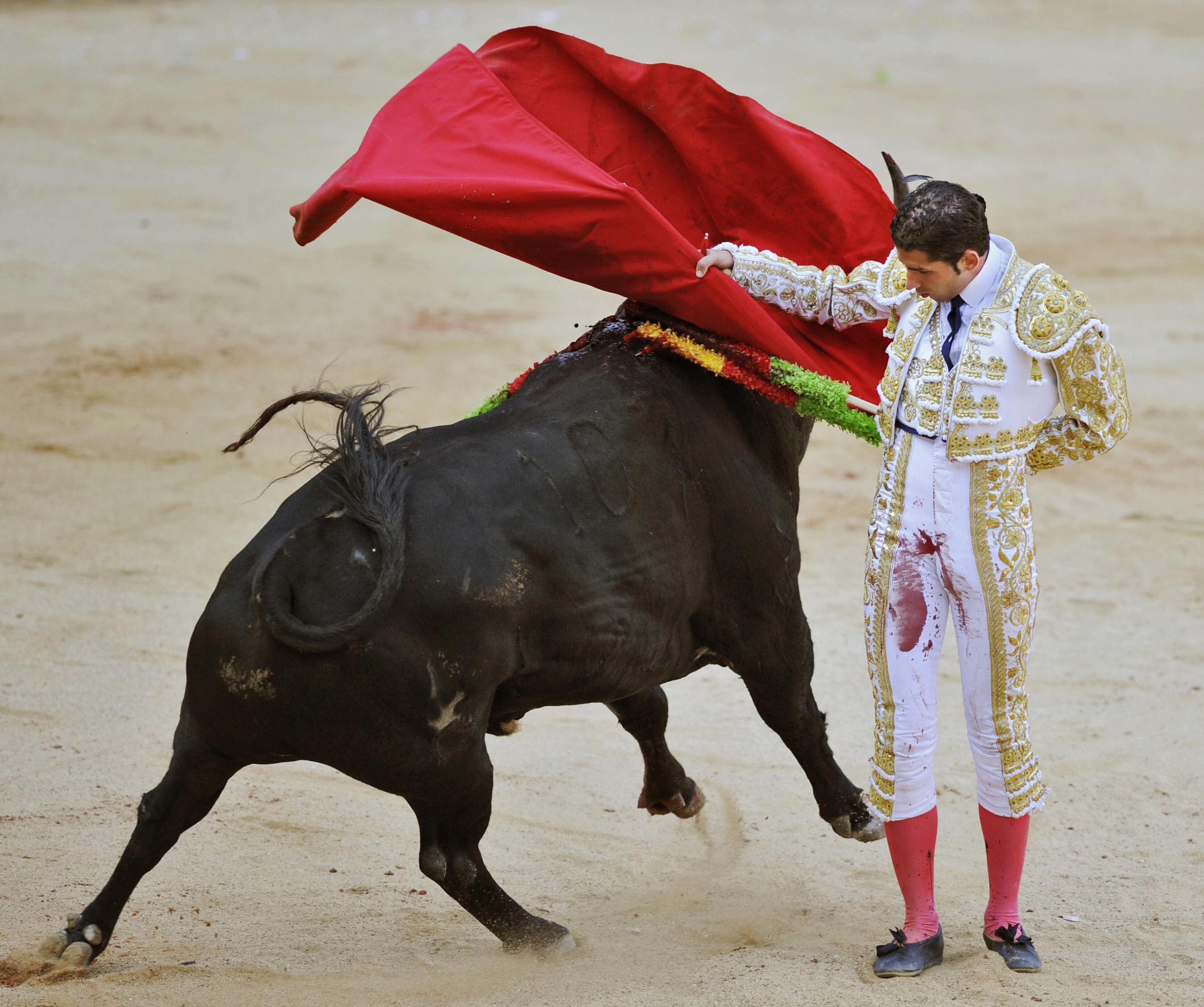 Spanish matador Serafin Martin.