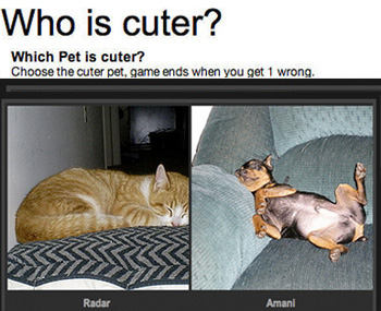 Can You Pick a Cuter Pet?