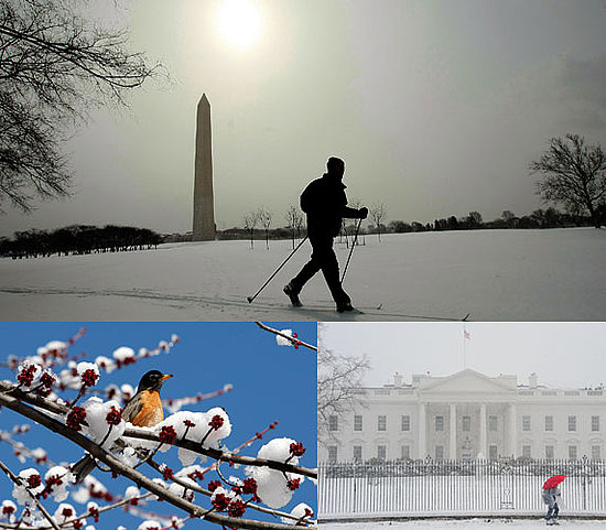 Photos of the Winter Snow Storm