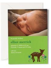 Lil Links: Make Custom Photo Birth Announcements Online