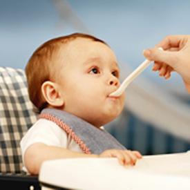 Homemade Baby Food 2009-04-20 08:00:23