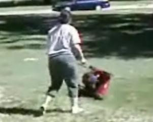 Crazy Lady Vs. Lawn Mower