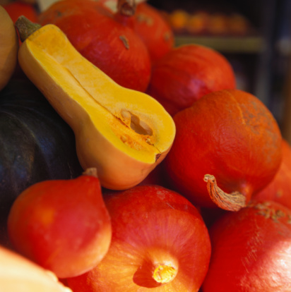 Know Your Winter Squash