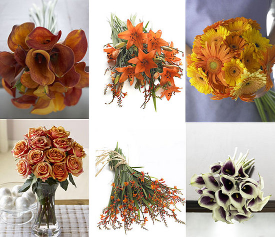 Organic Bouquet Quiz NOW OVER