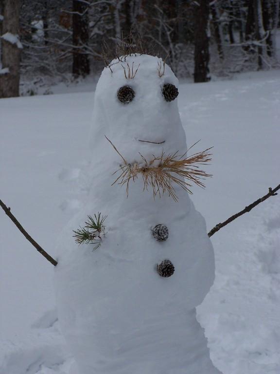 18688484_Snowman