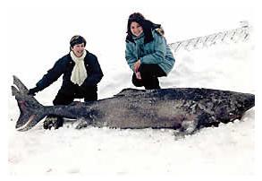 Ice Fishing:  Serenity at Sea