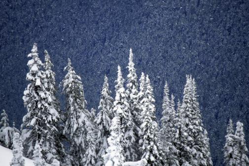 Come Party With Me: Winter Wonderland Weekend Getaway - Menu