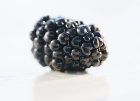 A blackberry. </p> <p>Source<br />