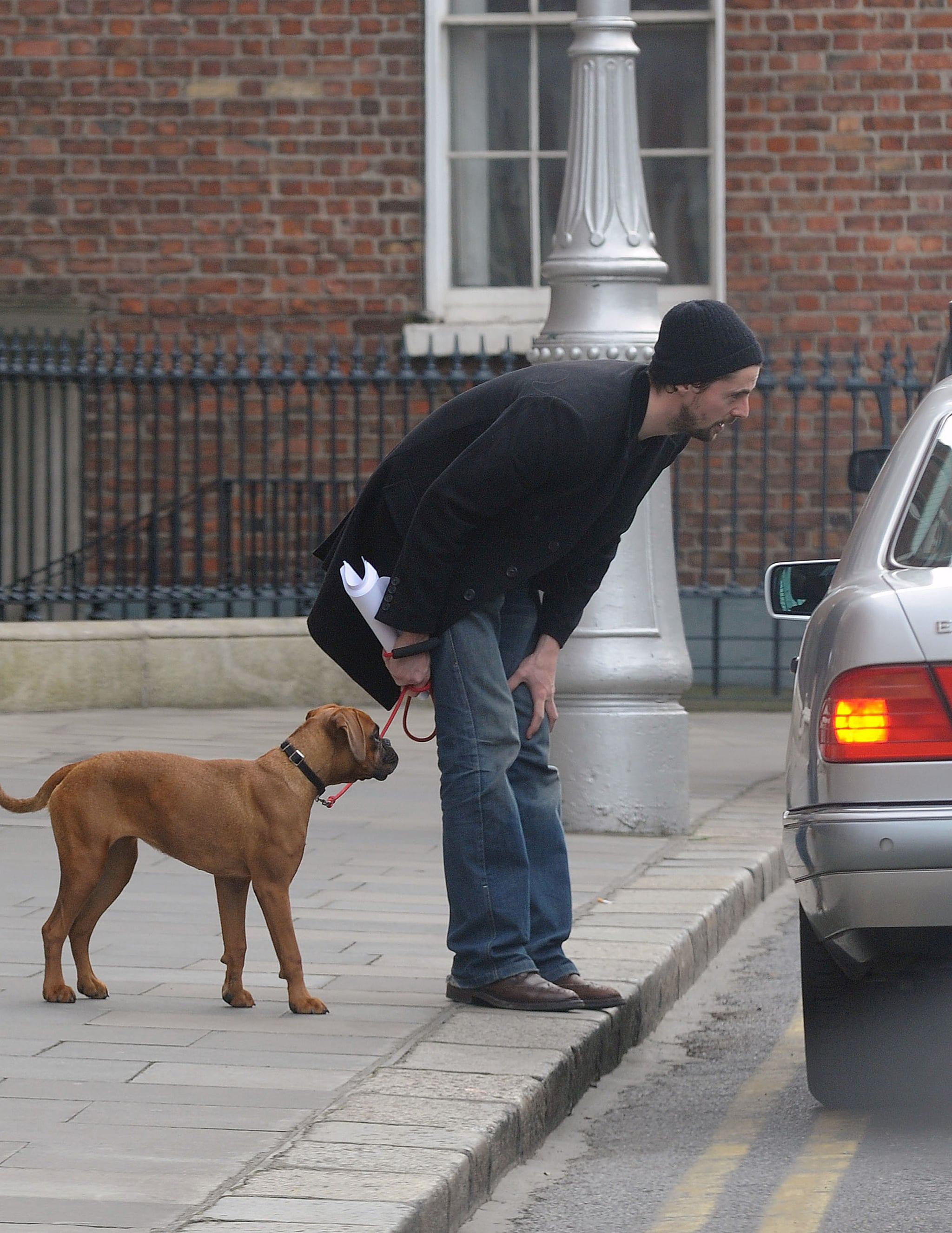 Easiest Way Transport Big Dog