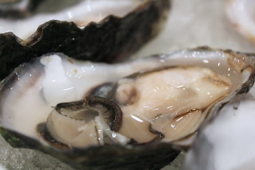 Oysters and Champagne Mignonette