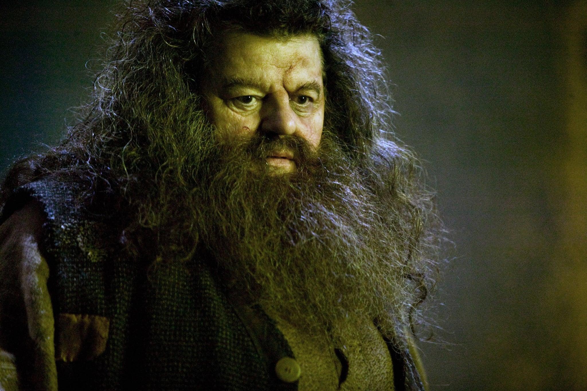 Harry Potter Hagrid Reddit Theory | POPSUGAR Tech
