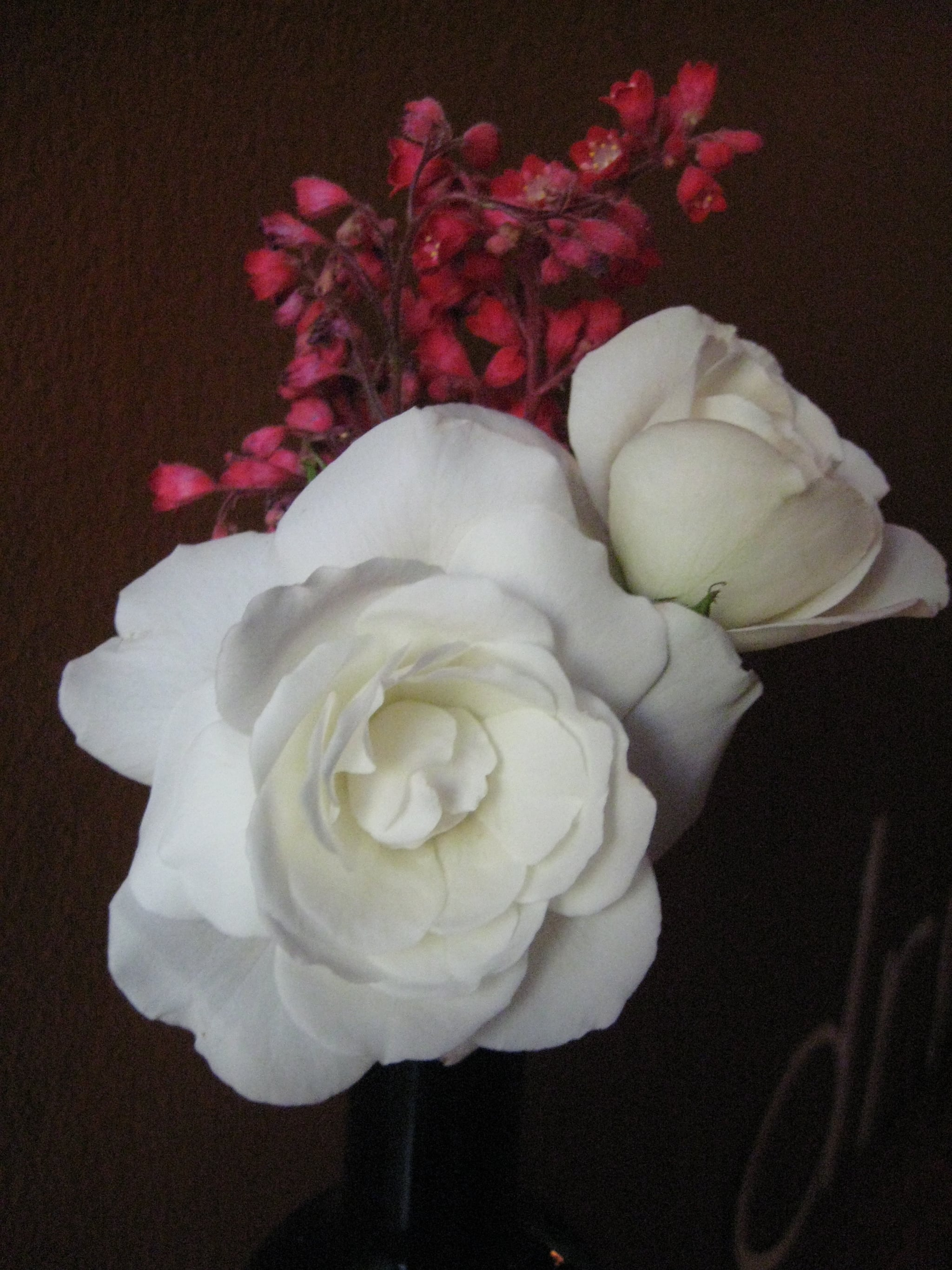 White flowers are neutral yet chic.